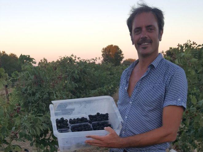 Pantaleo Agricoltura di Nicola Pentassuglia